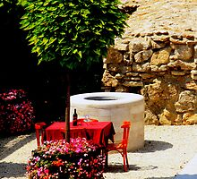 Table. Bottle of Wine. Red cloth. Tree. Flowers. Sun. Budapest. by Anatoly Lerner