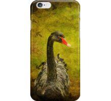 Black Swan iPhone Case iPhone Case/Skin