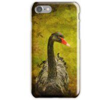 Black Swan iPhone Case iPhone Case/Skin