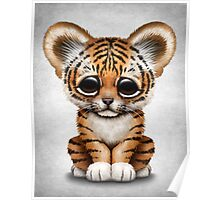 Cute Baby Tiger Cub  Poster