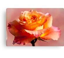 The Rose 3 Canvas Print