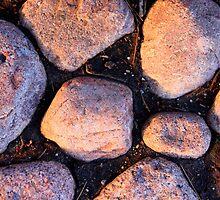 Rock garden by Karen  Rubeiz