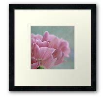 Joy of spring V Framed Print