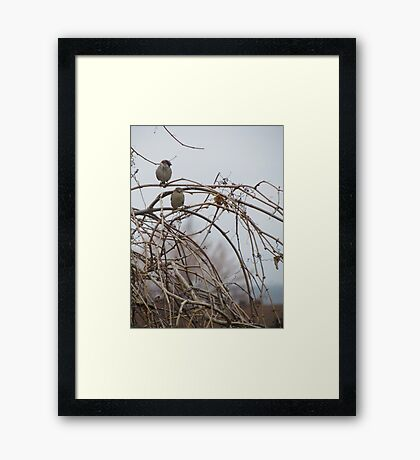 Life partners birds Framed Print