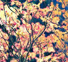 Woodland's Edge II by Jay Reed