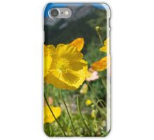 FairmontGarden iPhone Case/Skin
