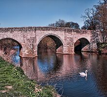 Teston Bridge by Dave Godden