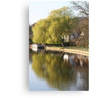 Willow tree reflection Canvas Print