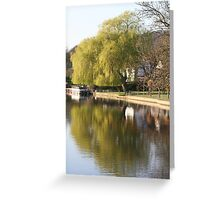 Willow tree reflection Greeting Card