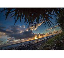 Pandanus Horizon Photographic Print