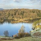 Tarn Hows, A Different Day by Jamie  Green