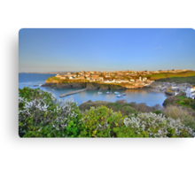 Cornwall: Evening, Overlooking Port Isaac Canvas Print