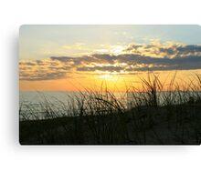 Dune Grass at Sunset Canvas Print