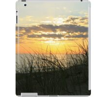Dune Grass at Sunset iPad Case/Skin