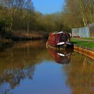 Narrow Boat on a Canal by Phill Sacre