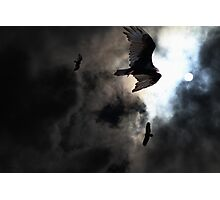 The Vultures Have Gathered In My Dreams . Version 2 . Golden Photographic Print