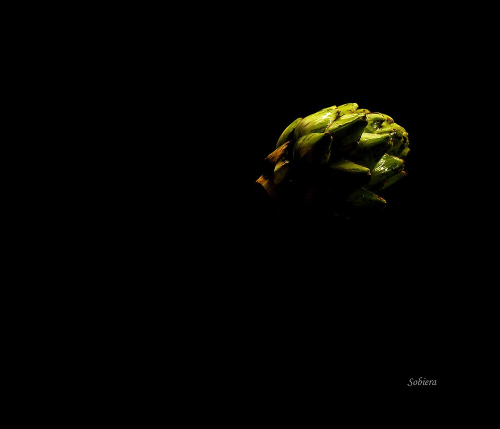 Artichoke by night by Rosemary Sobiera