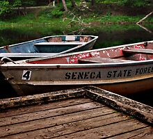 Docked|Seneca State Forest by torib
