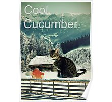 Cool Cucumber Poster