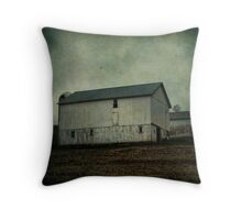 As I drove by the barn Throw Pillow
