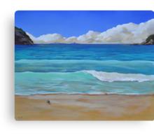 Matapouri Beach NZ  Canvas Print