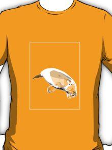 Dugong Grey White C T-Shirt
