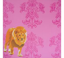 Wallpaper Lion Pink Photographic Print