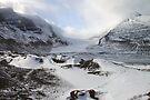 Athabasca Glacier, Jasper, Canada by Carole-Anne