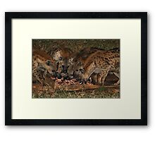 Pack of Spotted Hyena Scavenging at Night Framed Print