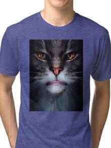 Ben Tri-blend T-Shirt