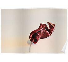RED LEAF - Repose' Poster