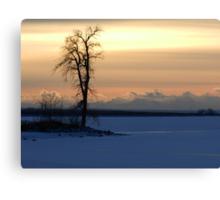 Frozen Silhouette Canvas Print