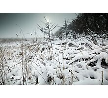 My Dreams Are Frozen Until I Can Share Them With You. Photographic Print