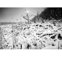 My Dreams Are Frozen Until I Can Share Them With You. BW Photographic Print