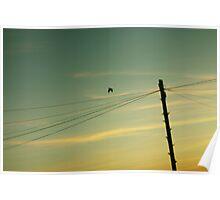 Morning Mr. Bird.  Poster