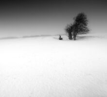 Hollow Victory BW by Andy Freer