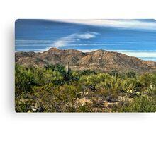 The Beautiful Arizona Desert Canvas Print