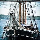 Hoist the Mainsail! by Deborah Clearwater