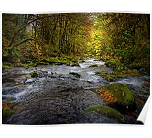 In All Its Glory ~ Lake Creek ~ Poster
