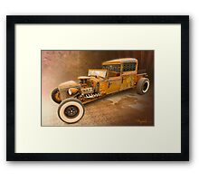 The Buzzard's Cage Framed Print