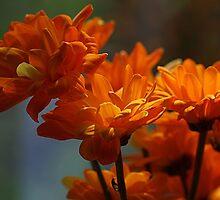 Jazzy Bouquet by Monnie Ryan