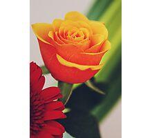 Rose I Photographic Print