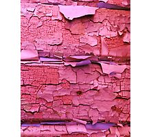 Layer apon layer of pink Photographic Print