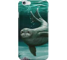 Hawaiian Monk Seal ~ Acrylic  iPhone Case/Skin