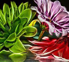 Red, Purple and Green by Keri Harrish