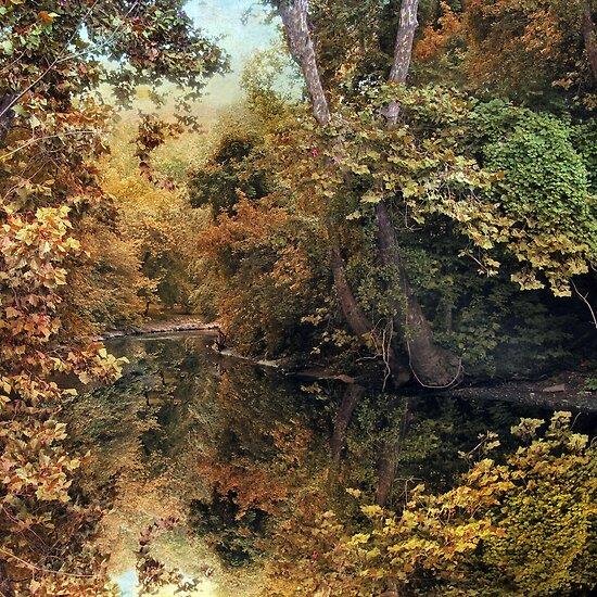 Autumn Mirror by Jessica Jenney