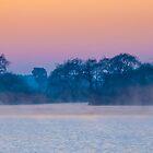 Pre-dawn fog by Rudi Venter