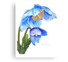 Twin Blue Poppies Canvas Print