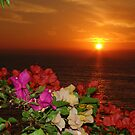 Springtide&#x27;s Sunset In Red - Puesta Del Sol Rojo En La Primavera by Bernhard Matejka