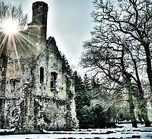 Winter ruins by willoughby